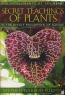 secret-teachings-of-plants1